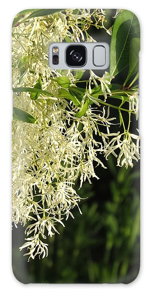 Fringe Tree Galaxy Case by Rebecca Overton