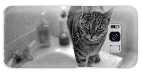 Fritz The Cat Brooklyn Ny 2003 Galaxy Case