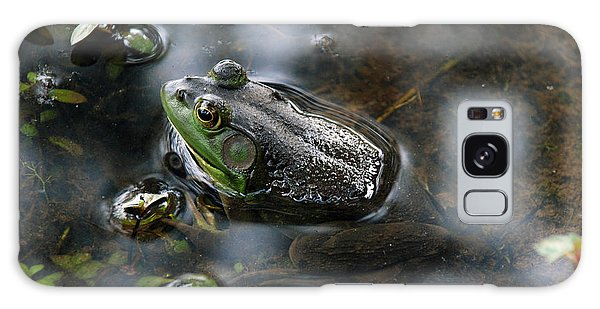 Frog In The Millpond Galaxy Case by Kay Lovingood