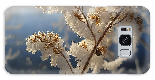 Frosty Dry Wood Aster Galaxy Case by Kent Lorentzen
