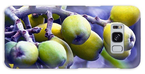 Sicilian Fruits Galaxy Case