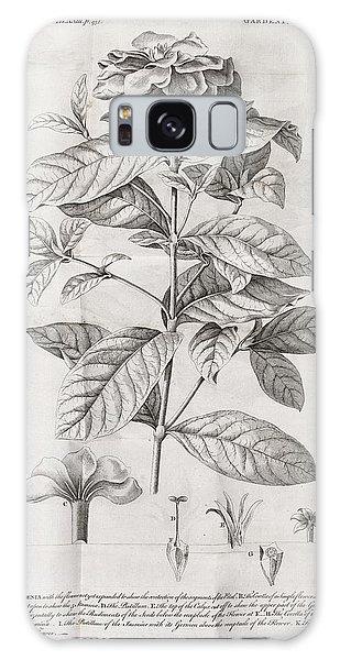 Gardenia Galaxy Case - Gardenia Plant, 18th Century by Middle Temple Library