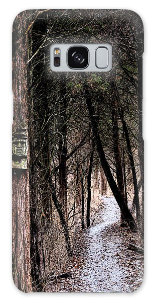Gently Into The Forest My Friend Galaxy Case