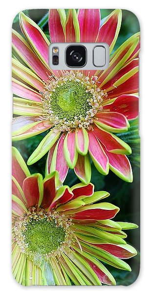 Gerber Daisies Galaxy Case by Bruce Bley