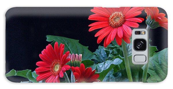 Crossville Galaxy S8 Case - Gerbera Daisy 5 by Douglas Barnett
