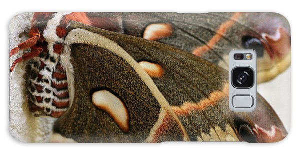 Giant Silkworm Moth 063 Galaxy Case