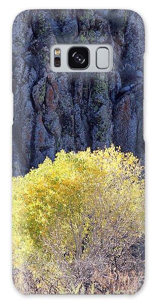 Gilded Autumn Galaxy Case