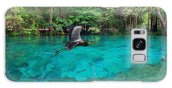 Ginnie Springs Galaxy Case