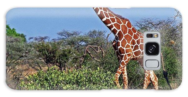 Giraffe Against Blue Sky Galaxy Case