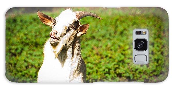 Galaxy Case - Goat Smiles by Cheryl Baxter
