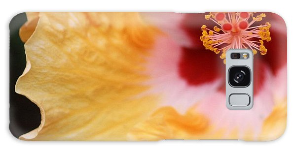 Golden And Crimson Hibiscus Galaxy Case