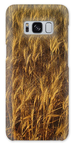 Golden Beauty Galaxy Case