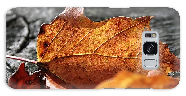 Golden Leaf Galaxy Case