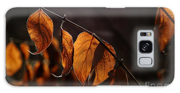 Golden Leaves Galaxy Case by Vilas Malankar