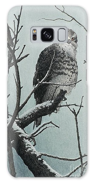 Goshawk Galaxy Case