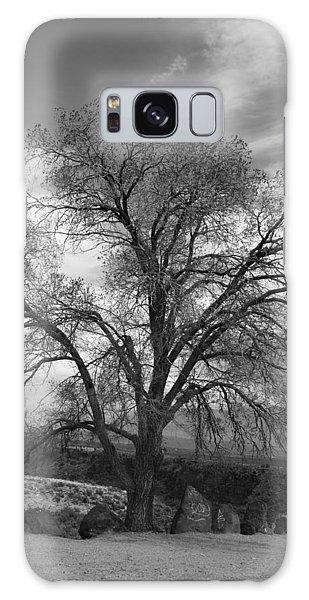 Grand Canyon Life Tree Galaxy Case
