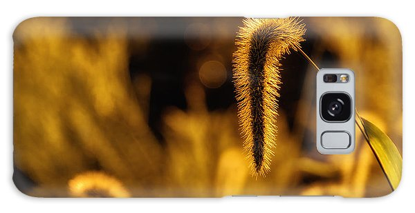 Grass In Golden Light Galaxy Case