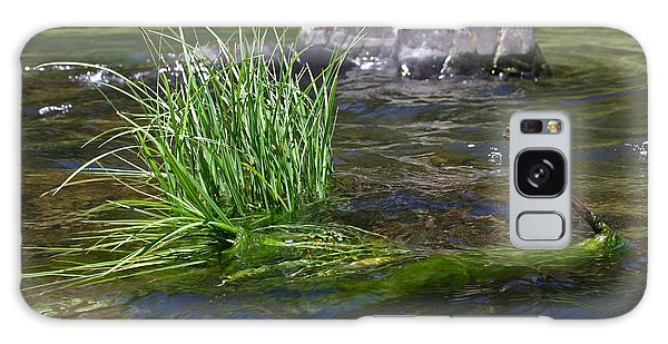 Grass Rock Stick Galaxy Case