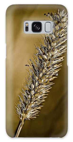 Grass Seedhead Galaxy Case