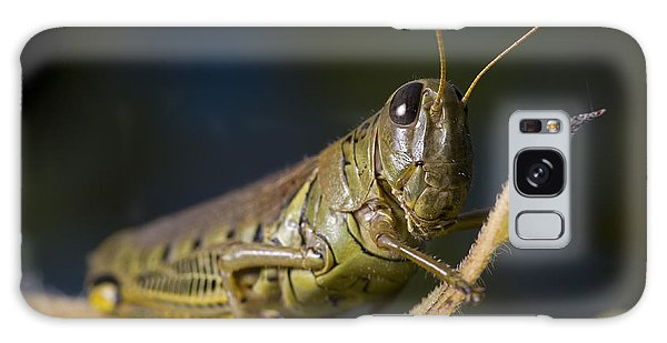Grasshopper Galaxy Case by Art Whitton