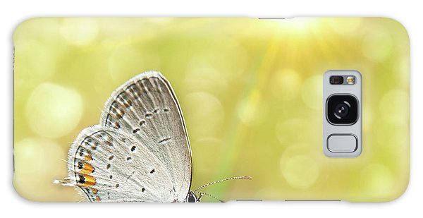Gray Hairstreak Butterfly  Galaxy Case