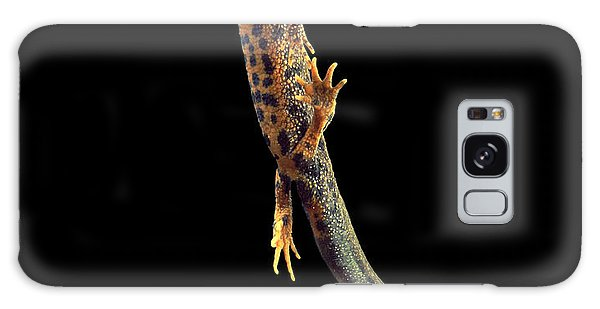 Newts Galaxy Case - Great Crested Newt by Andy Harmer
