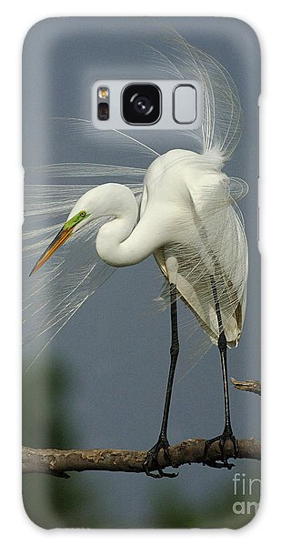 Great Egret Galaxy Case by Bob Christopher