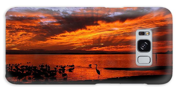 Great Heron Sunset Galaxy Case