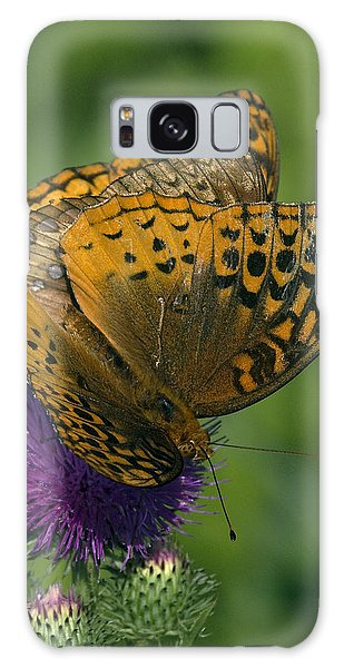 Great Spangled Fritillaries On Thistle Din108 Galaxy Case by Gerry Gantt