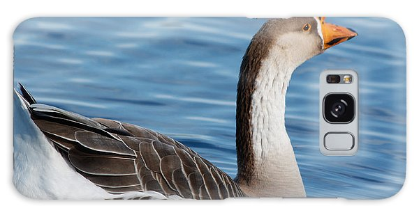 Greater White-fronted Goose Paddling Away Galaxy Case by Ann Murphy