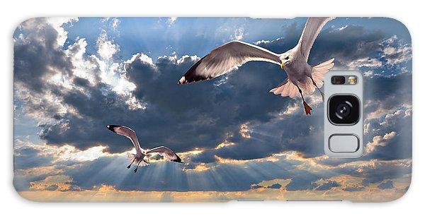 Greek Gulls With Sunbeams Galaxy Case