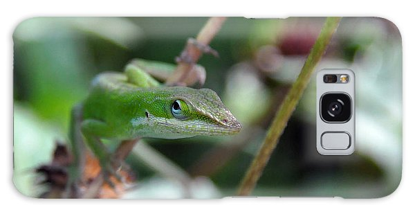Green Anole Galaxy Case by Kay Lovingood