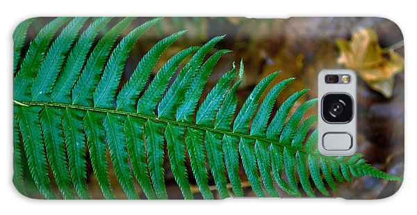 Green Fern Galaxy Case by Tikvah's Hope