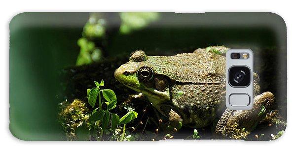 Green Frog Rana Clamitans Galaxy Case