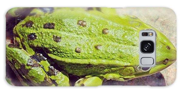 Green Frog Sitting On Stone Galaxy Case