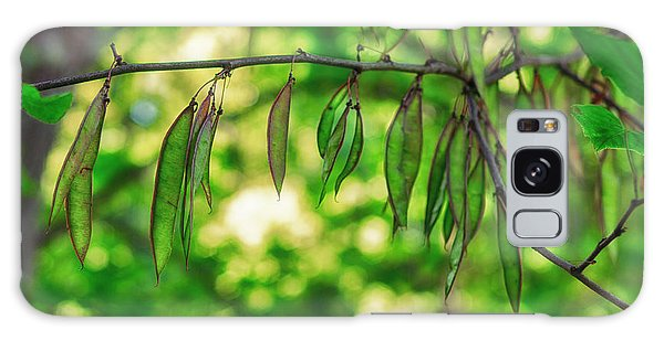 Green Redbud Seed Pods Galaxy Case