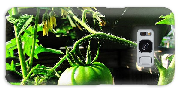 Green Tomatoes Galaxy Case