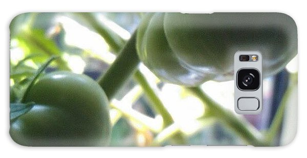 Food And Beverage Galaxy Case - Green #tomatoes #instaprints by Isabella Shores