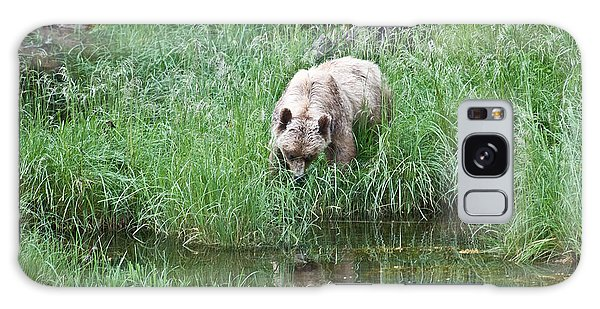 Grizzly Bear And Reflection On Prince Rupert Island Canada 2209 Galaxy Case