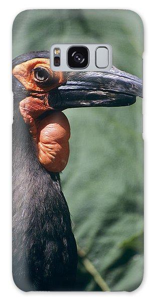 Ground Hornbill Head Galaxy Case by David Aubrey