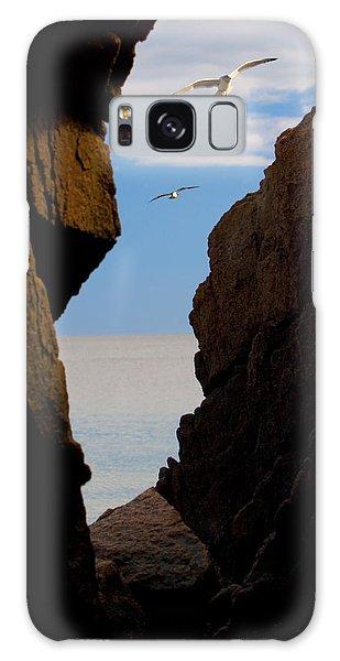 Gulls Of Acadia Galaxy Case
