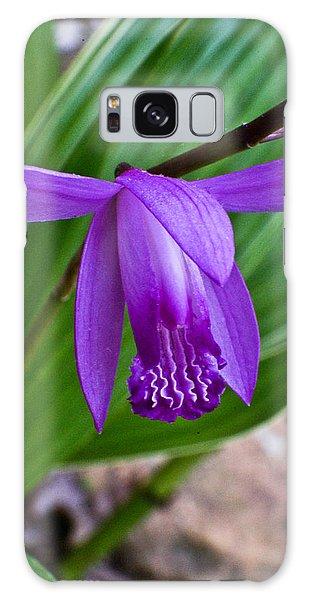 Crossville Galaxy S8 Case - Hardy Orchid 1 by Douglas Barnett