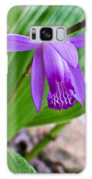 Crossville Galaxy S8 Case - Hardy Orchid 2 by Douglas Barnett