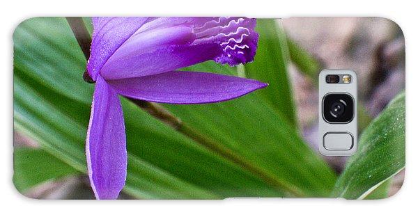 Crossville Galaxy S8 Case - Hardy Orchid 3 by Douglas Barnett