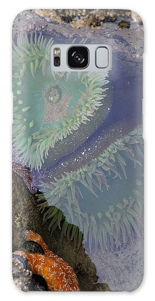 Heart Of The Tide Pool Galaxy Case by Mick Anderson