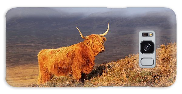 Highland Cattle Landscape Galaxy Case