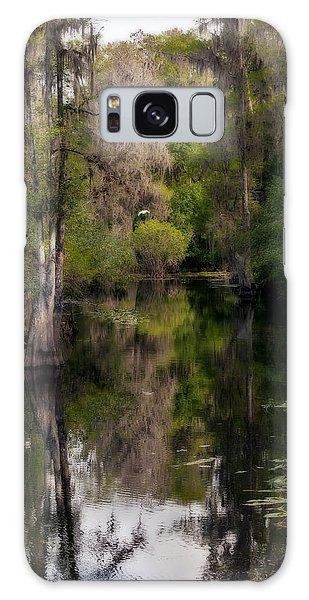 Hillsborough River In March Galaxy Case