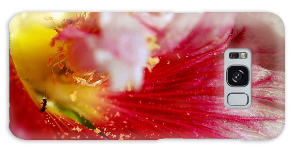 Hollyhock And The Ant Galaxy Case