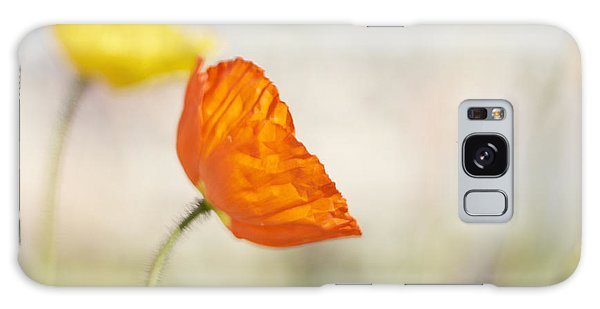Honey Bee And Colorful Poppies Galaxy Case