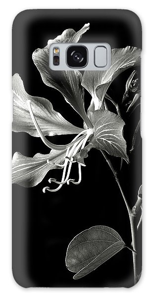 Hong Kong Orchid In Black And White Galaxy Case